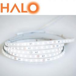 HALO-HP-230V 50M
